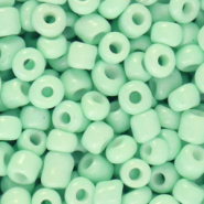 Rocailles 6/0 (4mm) Neo mint green