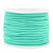 Gekleurd elastiek 2mm Neo mint green