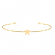 Armband ster Goud