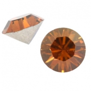 Swarovski Elements puntstenen SS 24 (5.2 mm) Smoked topaz